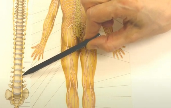 Анамнез синдрома беспокойных ного