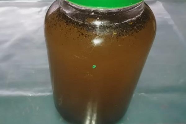 Настойка подмора пчел