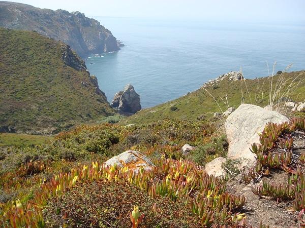 Горные склоны острова Мадейра