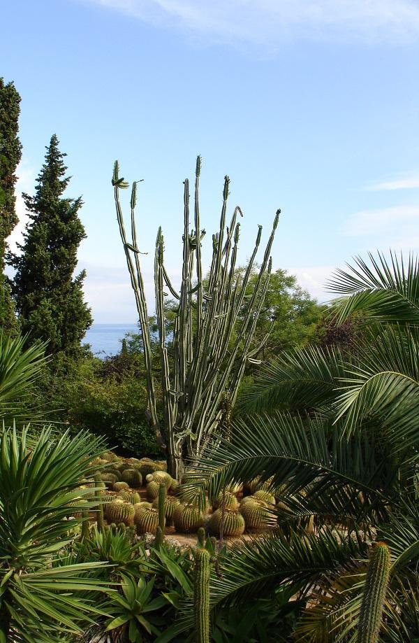 Ботанический парк Каталонии