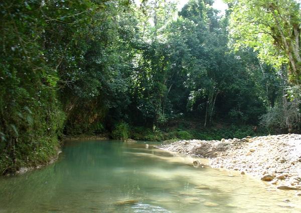горный ручей в Доминикане