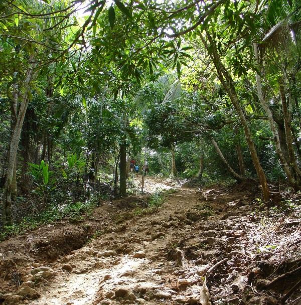 тропа в горах Доминиканы