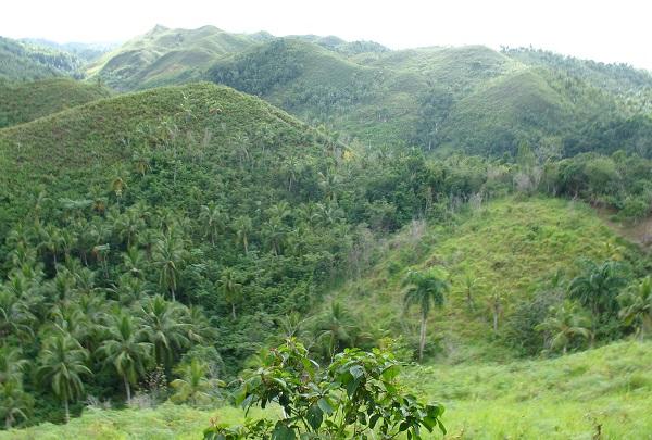 Горные склоны Доминиканы