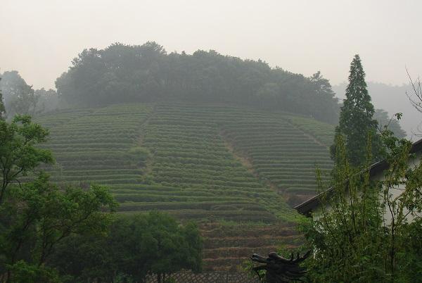 китайские склоны